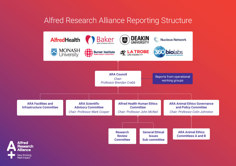 Alfred Research Alliance Reporting Structure